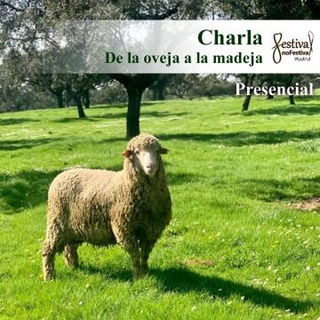De la oveja a la madeja - WOOLDREAMERS (PRESENCIAL)